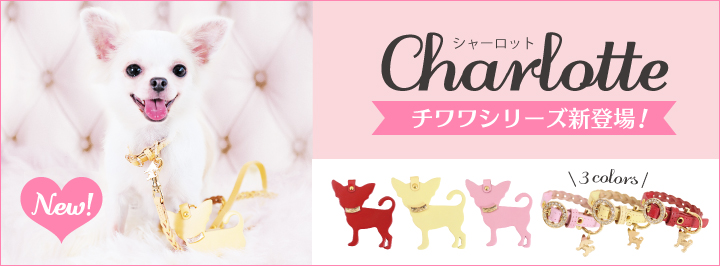 Charlotte シャーロット 1st collection