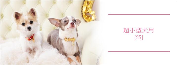 超小型犬用[SS] 犬 リード 首輪 通販